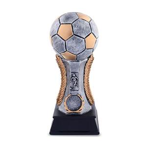 Biểu tượng bóng đá - 5P17