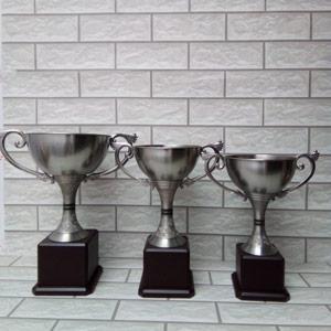 Cúp Golf Kim Loại MO18