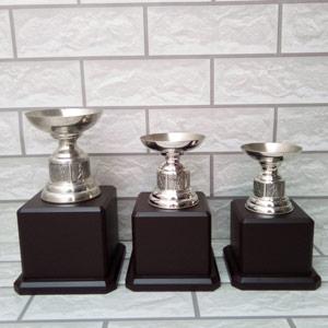 Cúp Golf Kim loại TMX6